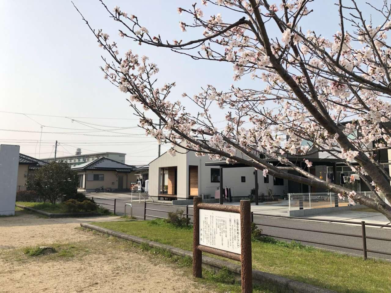 image 桜の見える建売